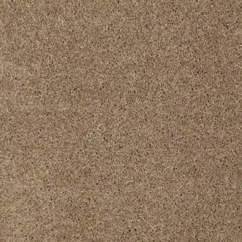 Origins II - Briar From Shaw Carpet