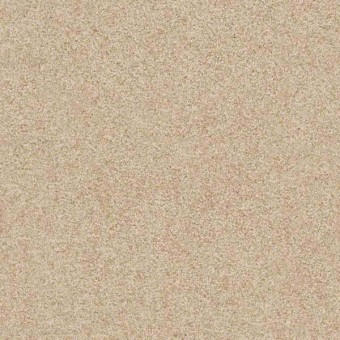 Gusto I - Wet Sand From Shaw Carpet
