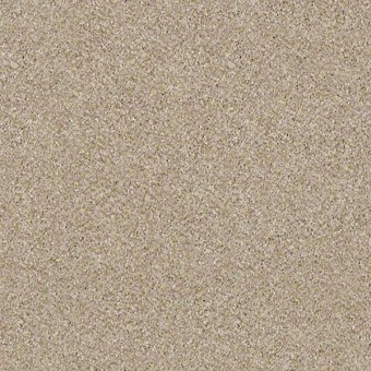 Of Course We Can III - Linen From Shaw Carpet