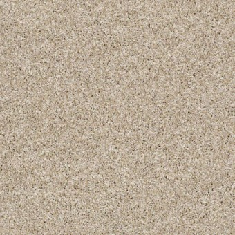 Shake It Up (Tweed) - Creamy Silk From Shaw Carpet