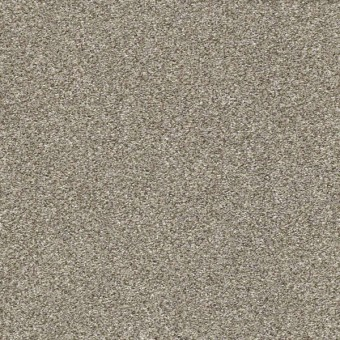 Points Of Color II - Oatmeal From Shaw Carpet