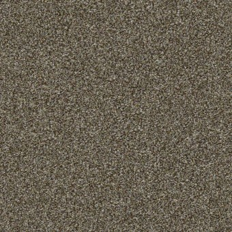 Points Of Color II - Mahogany From Shaw Carpet