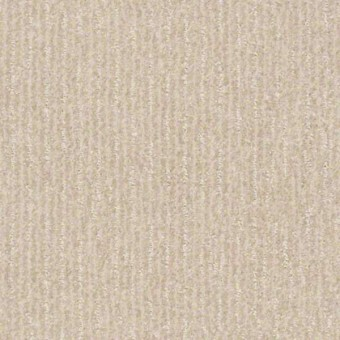 Outside The Lines - Eggshell From Shaw Carpet