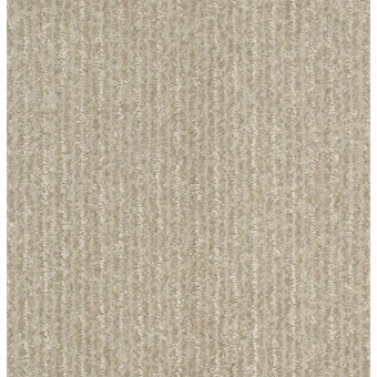 Outside The Lines - Gold Rush From Shaw Carpet