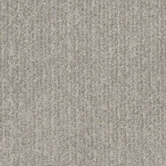 Outside The Lines - Platinum From Shaw Carpet