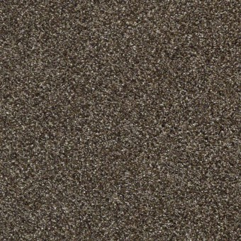 Perpetual I - Oatmeal From Shaw Carpet