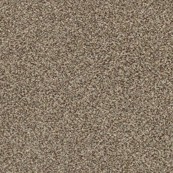 Perpetual I - Freckles From Shaw Carpet