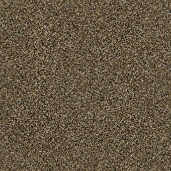 Perpetual I - Gold Rush From Shaw Carpet