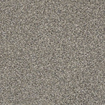 Perpetual I - Fog From Shaw Carpet