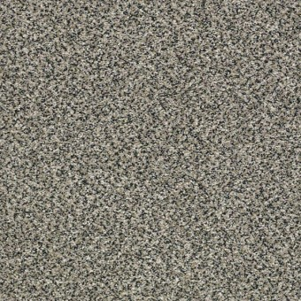 Perpetual I - Shadow From Shaw Carpet