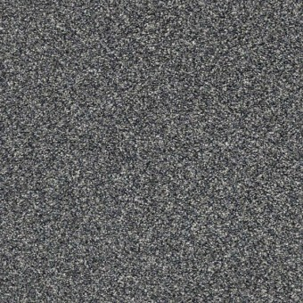 Perpetual I - Steel From Shaw Carpet