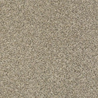 Perpetual I - Khaki From Shaw Carpet