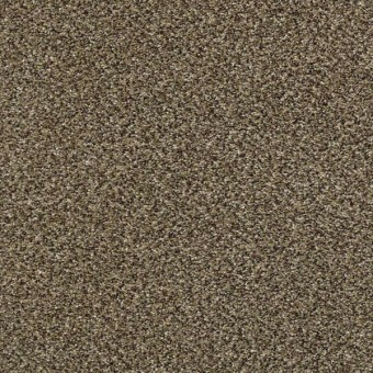 Perpetual I - Leather From Shaw Carpet