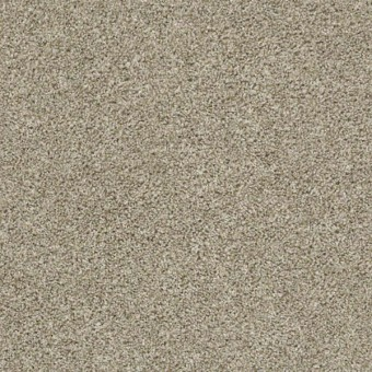 Shake it Up (Tonal) - Stucco From Shaw Carpet