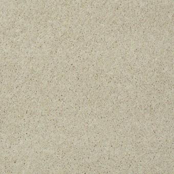 Keen Senses II - Treasure From Shaw Carpet