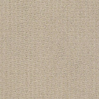 Entwined With You - Studio Taupe From Shaw Carpet