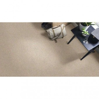 Entwined With You Shaw Carpet Save 30 50 At Carpet