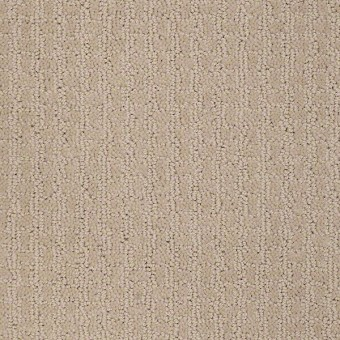 Complete Control - Boutique From Shaw Carpet