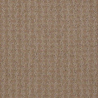 Complete Control - Biscotti From Shaw Carpet