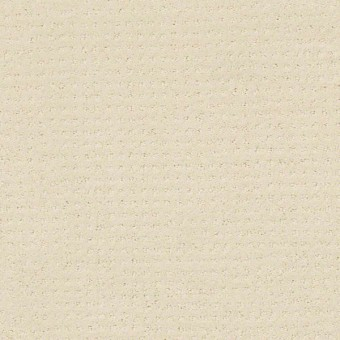 Alluring Disposition - Ivory Paper From Shaw Carpet