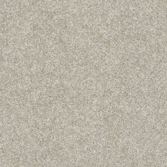 All Over It II - Oatmeal From Shaw Carpet
