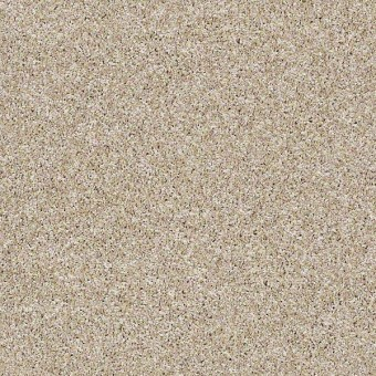 Work The Color - Biscotti From Shaw Carpet