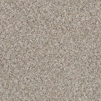 Frosting - Glacier From Shaw Carpet