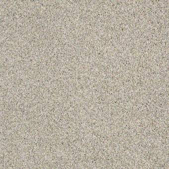 Blending Upward - Sand Crystal From Shaw Carpet