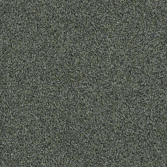 Palette - Lush From Shaw Carpet