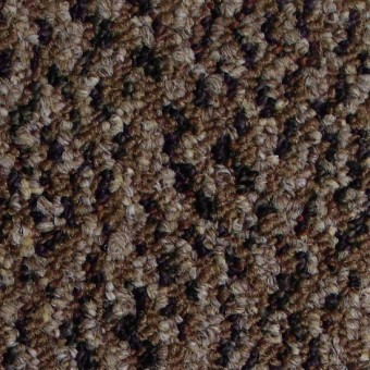 Energize - Rejuvenate From Shaw Carpet