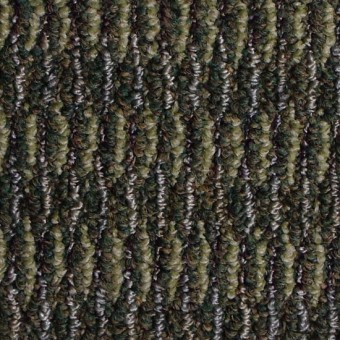 Jargon - DSL From Shaw Carpet