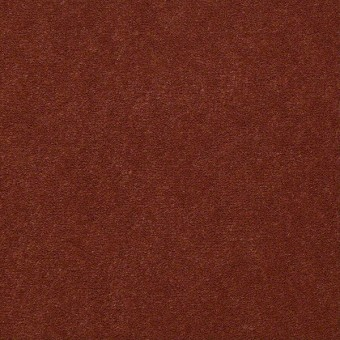 Baytowne III 36 - Allspice From Shaw Carpet