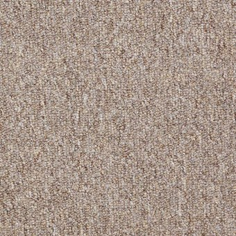 Dividend 28 - Capital From Shaw Carpet