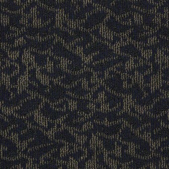 New Release - Long Lines From Shaw Carpet