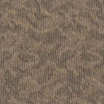 Ripple Effect Tile - Pay it Forward From Shaw Carpet