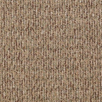 All Access - Entry From Shaw Carpet