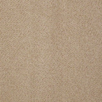 Prestige - Authority From Shaw Carpet