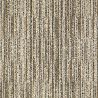 Cutaway - Selection From Shaw Carpet