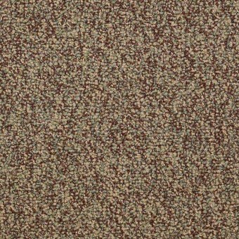 No Limits 22 - Achievement From Shaw Carpet