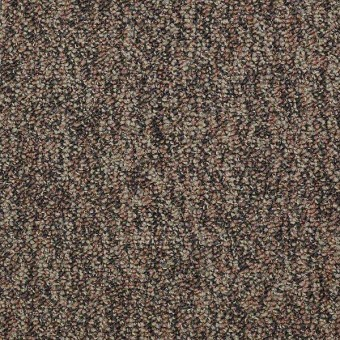 No Limits 22 - Border From Shaw Carpet