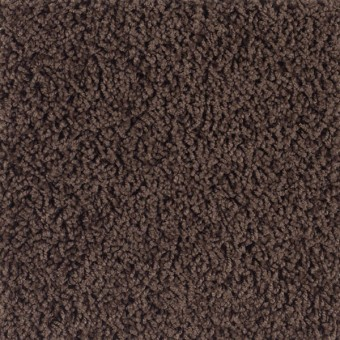 Heritage - Woodstone From Southwind Carpet