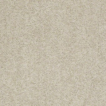 Ultimate Annuity - Bisque From Shaw Carpet