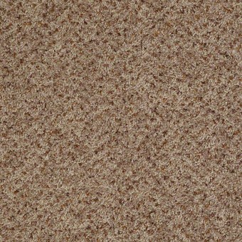 Style 32 (B) - Bee Hive From Shaw Carpet