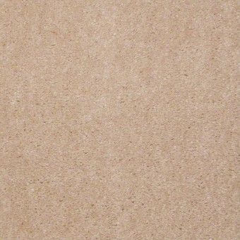 Bandit - Sweet Nectar From Shaw Carpet