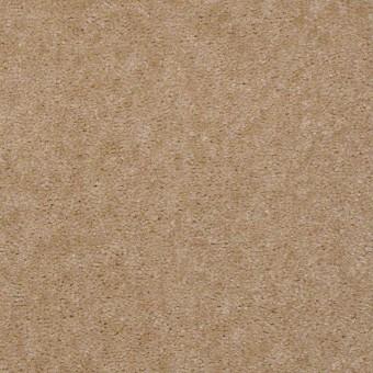 Bandit - Balsa Wood From Shaw Carpet