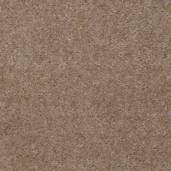 Bandit - Ashen From Shaw Carpet