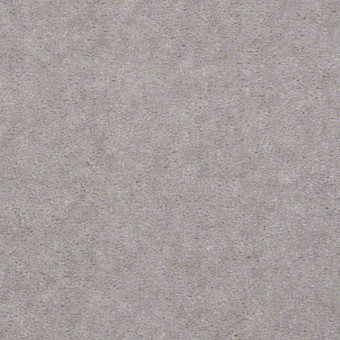 Bandit - Silver Streak From Shaw Carpet