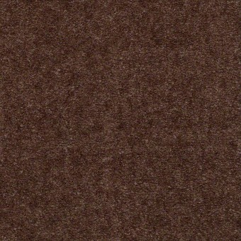 Bandit - Brownstone From Shaw Carpet