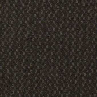 Elements - Jungle Vine From Shaw Carpet