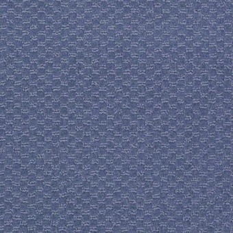 Elements - Blue Shale From Shaw Carpet